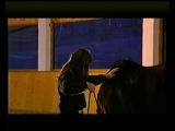 Работа с неподготовленной лошадью (обучающий фильм)